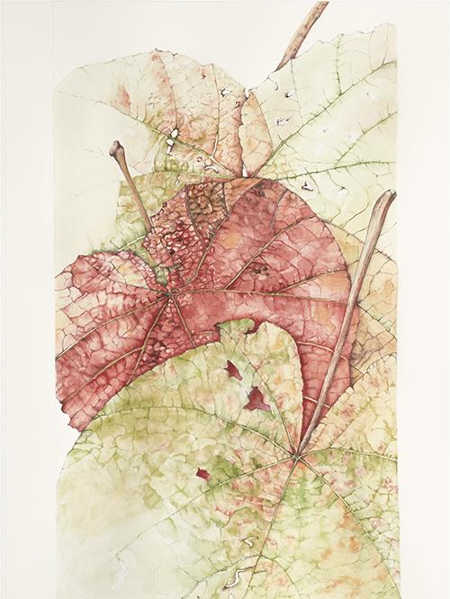 Elisabeth Vitou Feuilles exposition Galerie Couteron